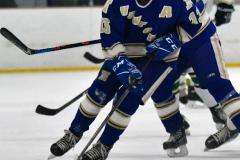 Gallery CIAC Ice Hockey; Northeastern 4 vs. Newtown 3 - Photo # 685