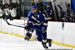 Gallery CIAC Ice Hockey; Northeastern 4 vs. Newtown 3 - Photo # 696