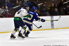 Gallery CIAC Ice Hockey; Northeastern 4 vs. Newtown 3 - Photo # 709