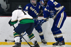 Gallery CIAC Ice Hockey; Northeastern 4 vs. Newtown 3 - Photo # 740