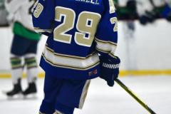 Gallery CIAC Ice Hockey; Northeastern 4 vs. Newtown 3 - Photo # 746
