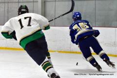 Gallery CIAC Ice Hockey; Northeastern 4 vs. Newtown 3 - Photo # 753
