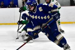 Gallery CIAC Ice Hockey; Northeastern 4 vs. Newtown 3 - Photo # 759