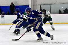 Gallery CIAC Ice Hockey; Northeastern 4 vs. Newtown 3 - Photo # 761