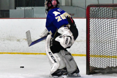 Gallery CIAC Ice Hockey; Northeastern 4 vs. Newtown 3 - Photo # 765