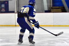 Gallery CIAC Ice Hockey; Northeastern 4 vs. Newtown 3 - Photo # 795