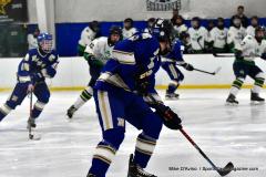 Gallery CIAC Ice Hockey; Northeastern 4 vs. Newtown 3 - Photo # 804