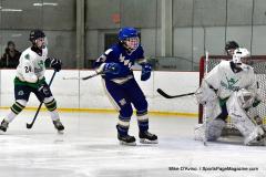 Gallery CIAC Ice Hockey; Northeastern 4 vs. Newtown 3 - Photo # 821