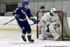Gallery CIAC Ice Hockey; Northeastern 4 vs. Newtown 3 - Photo # 823