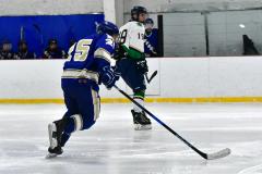 Gallery CIAC Ice Hockey; Northeastern 4 vs. Newtown 3 - Photo # 825