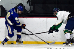 Gallery CIAC Ice Hockey; Northeastern 4 vs. Newtown 3 - Photo # 830