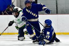 Gallery CIAC Ice Hockey; Northeastern 4 vs. Newtown 3 - Photo # 838