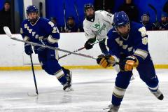 Gallery CIAC Ice Hockey; Northeastern 4 vs. Newtown 3 - Photo # 846