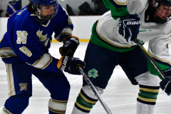 Gallery CIAC Ice Hockey; Northeastern 4 vs. Newtown 3 - Photo # 850