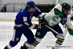 Gallery CIAC Ice Hockey; Northeastern 4 vs. Newtown 3 - Photo # 851