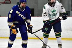 Gallery CIAC Ice Hockey; Northeastern 4 vs. Newtown 3 - Photo # 854