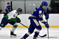Gallery CIAC Ice Hockey; Northeastern 4 vs. Newtown 3 - Photo # 864