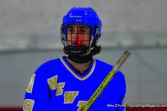 Gallery CIAC Ice Hockey; Northeastern 4 vs. Newtown 3 - Photo # 875