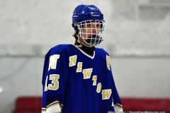 Gallery CIAC Ice Hockey; Northeastern 4 vs. Newtown 3 - Photo # 876