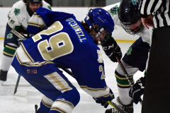 Gallery CIAC Ice Hockey; Northeastern 4 vs. Newtown 3 - Photo # 879
