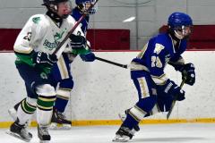 Gallery CIAC Ice Hockey; Northeastern 4 vs. Newtown 3 - Photo # 885