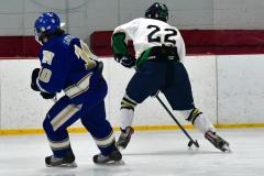Gallery CIAC Ice Hockey; Northeastern 4 vs. Newtown 3 - Photo # 901