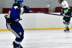 Gallery CIAC Ice Hockey; Northeastern 4 vs. Newtown 3 - Photo # 906