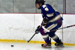 Gallery CIAC Ice Hockey; Northeastern 4 vs. Newtown 3 - Photo # 910