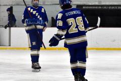 Gallery CIAC Ice Hockey; Northeastern 4 vs. Newtown 3 - Photo # 936