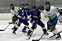Gallery CIAC Ice Hockey; Northeastern 4 vs. Newtown 3 - Photo # 947