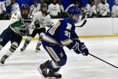 Gallery CIAC Ice Hockey; Northeastern 4 vs. Newtown 3 - Photo # 960