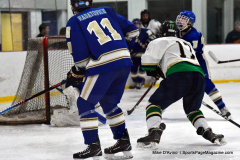 Gallery CIAC Ice Hockey; Northeastern 4 vs. Newtown 3 - Photo # 1019