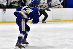 Gallery CIAC Ice Hockey; Northeastern 4 vs. Newtown 3 - Photo # 1028