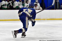 Gallery CIAC Ice Hockey; Northeastern 4 vs. Newtown 3 - Photo # 1029