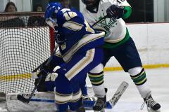 Gallery CIAC Ice Hockey; Northeastern 4 vs. Newtown 3 - Photo # 1059