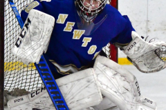 Gallery CIAC Ice Hockey; Northeastern 4 vs. Newtown 3 - Photo # 1084