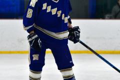 Gallery CIAC Ice Hockey; Northeastern 4 vs. Newtown 3 - Photo # 1106