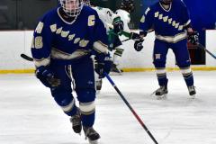 Gallery CIAC Ice Hockey; Northeastern 4 vs. Newtown 3 - Photo # 1125