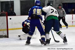 Gallery CIAC Ice Hockey; Northeastern 4 vs. Newtown 3 - Photo # 1135