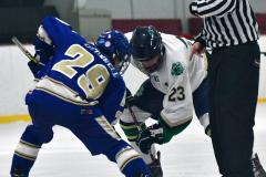 Gallery CIAC Ice Hockey; Northeastern 4 vs. Newtown 3 - Photo # 1138