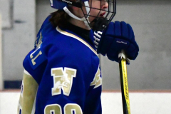 Gallery CIAC Ice Hockey; Northeastern 4 vs. Newtown 3 - Photo # 1163