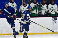 Gallery CIAC Ice Hockey; Northeastern 4 vs. Newtown 3 - Photo # 1178