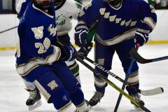 Gallery CIAC Ice Hockey; Northeastern 4 vs. Newtown 3 - Photo # 1193
