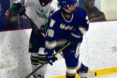 Gallery CIAC Ice Hockey; Northeastern 4 vs. Newtown 3 - Photo # 1199