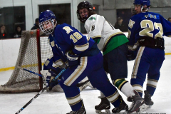 Gallery CIAC Ice Hockey; Northeastern 4 vs. Newtown 3 - Photo # 1225