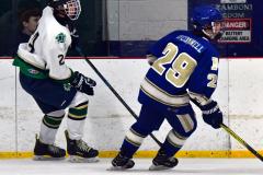Gallery CIAC Ice Hockey; Northeastern 4 vs. Newtown 3 - Photo # 1252