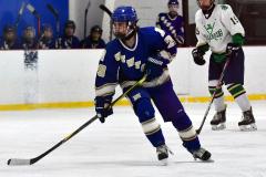 Gallery CIAC Ice Hockey; Northeastern 4 vs. Newtown 3 - Photo # 1265
