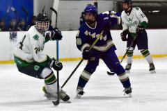 Gallery CIAC Ice Hockey; Northeastern 4 vs. Newtown 3 - Photo # 1267