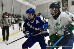 Gallery CIAC Ice Hockey; Northeastern 4 vs. Newtown 3 - Photo # 1287