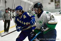 Gallery CIAC Ice Hockey; Northeastern 4 vs. Newtown 3 - Photo # 1288